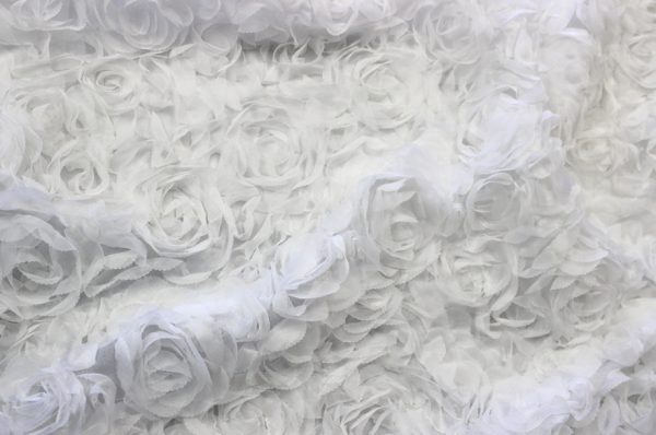 Sheer Rose Garden white